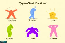 انواع عواطف